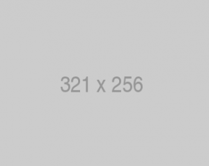 321 x 256 placeholder